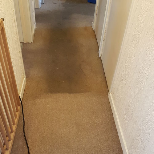 Carpet-cleaning-in-poole-bournemouth-areas